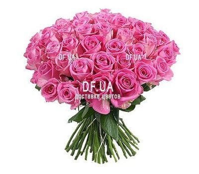 """55 pink roses"" in the online flower shop df.ua"