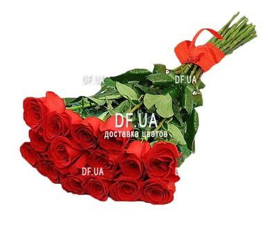 """15 roses 1 meter"" in the online flower shop df.ua"
