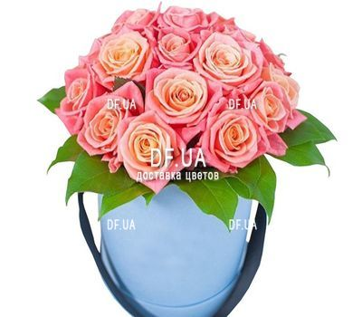 """17 roses in a round box"" in the online flower shop df.ua"