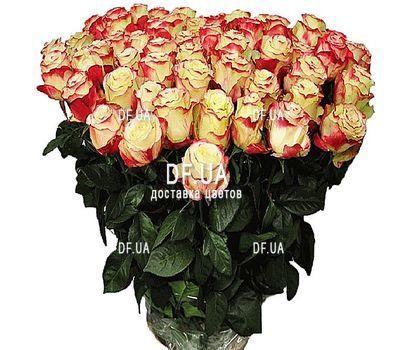 """""""Большие розы"""" в интернет-магазине цветов df.ua"""