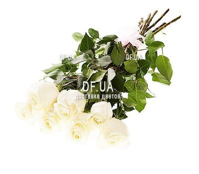 """Bouquet of 7 imported white roses"" in the online flower shop df.ua"