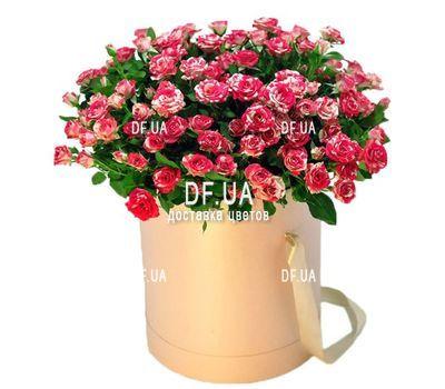 """""""Коробка 19 розовых кустовых роз"""" в интернет-магазине цветов df.ua"""
