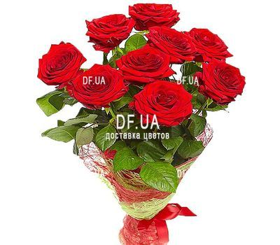 """9 red roses - view 2"" in the online flower shop df.ua"