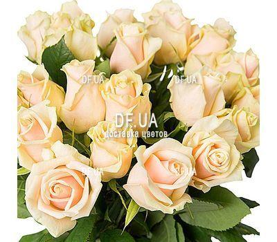 """25 кремовых роз"" in the online flower shop df.ua"