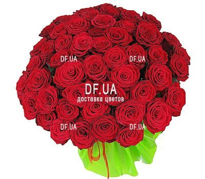 """Bouquet of 47 red roses - view 1"" in the online flower shop df.ua"