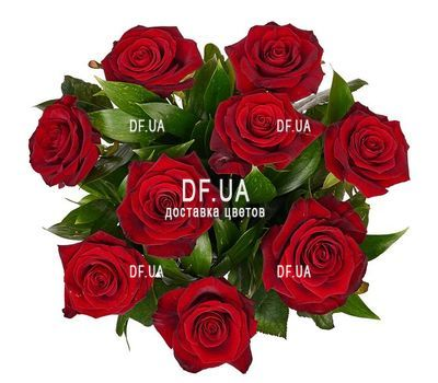 """Bouquet of 9 burgundy roses - view 1"" in the online flower shop df.ua"
