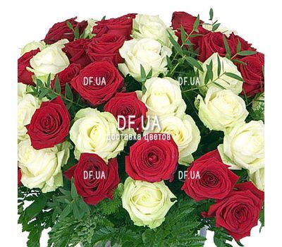 """Bouquet of roses red and white - view 1"" in the online flower shop df.ua"