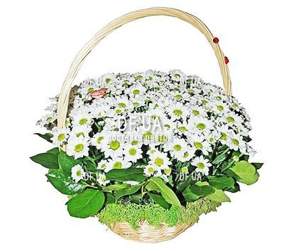 """Basket with flowers for the wedding"" in the online flower shop df.ua"