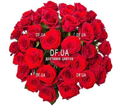 """Red roses bouquet - view 1"" in the online flower shop df.ua"
