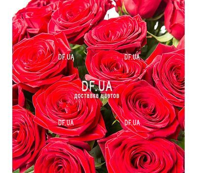 """Red roses bouquet - view 2"" in the online flower shop df.ua"
