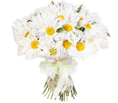 """""""Красивый букет ромашек"""" в интернет-магазине цветов df.ua"""