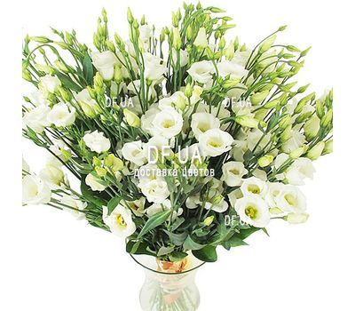 """Large bouquet of white eustoma"" in the online flower shop df.ua"