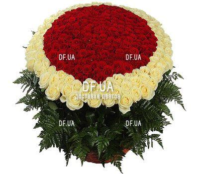 """""""Букет 1000 (1001) роз"""" в интернет-магазине цветов df.ua"""