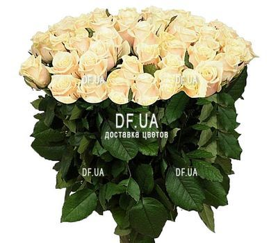 """Bouquet of 75 white roses"" in the online flower shop df.ua"