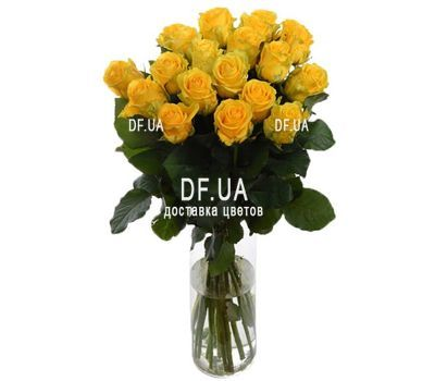"""Букет из 19 роз"" in the online flower shop df.ua"