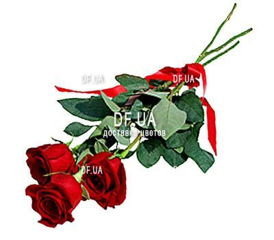 """3 red roses"" in the online flower shop df.ua"