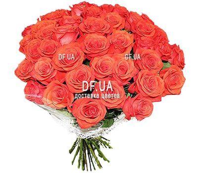 """""""37 оранжевых роз"""" в интернет-магазине цветов df.ua"""