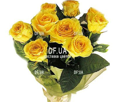 """Bouquet of 9 roses"" in the online flower shop df.ua"