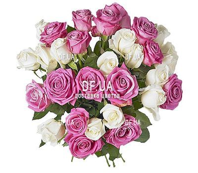 """Bouquet of roses white and pink"" in the online flower shop df.ua"