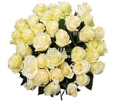 """35 белых роз"" in the online flower shop df.ua"