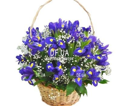 """Bouquet of irises in a basket"" in the online flower shop df.ua"