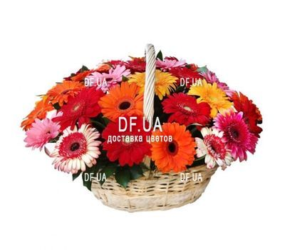 """Gerberas in the basket"" in the online flower shop df.ua"