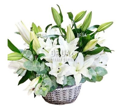 """Arrangement of lilies in a basket"" in the online flower shop df.ua"
