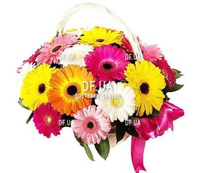 """""""Корзина из 25 гербер"""" in the online flower shop df.ua"""