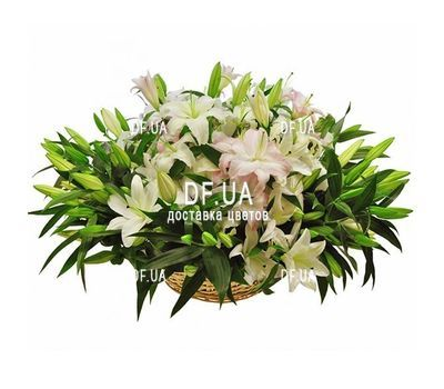 """Lilies in the basket"" in the online flower shop df.ua"