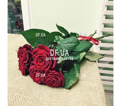 """5 red roses view 1"" in the online flower shop df.ua"