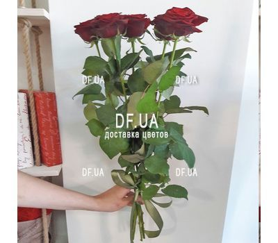 """5 red roses view 3"" in the online flower shop df.ua"