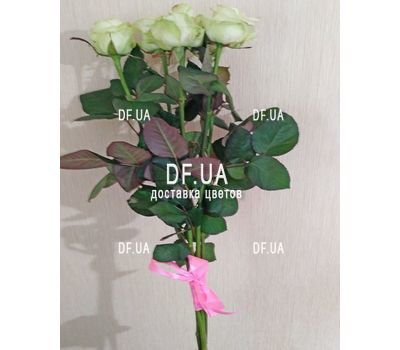 """Small bouquet of 5 roses view 1"" in the online flower shop df.ua"
