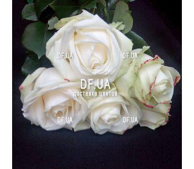 """""""Маленький букет из 5 роз вид 3"""" в интернет-магазине цветов df.ua"""