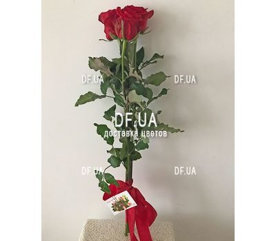 """""""Mini bouquet of 3 roses view 2"""" in the online flower shop df.ua"""