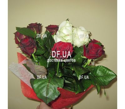 """""""11 roses - view 1"""" in the online flower shop df.ua"""