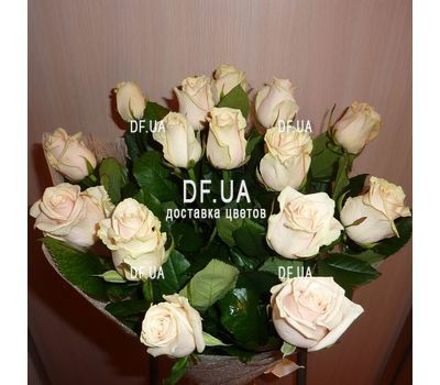 """15 cream roses - view 1"" in the online flower shop df.ua"