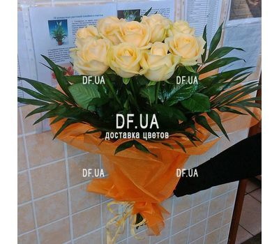 """15 cream roses - view 3"" in the online flower shop df.ua"