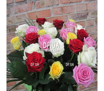 """25 multi-colored roses - wiev 5"" in the online flower shop df.ua"