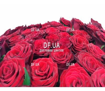 """""""27 красных роз - вид 1"""" в интернет-магазине цветов df.ua"""