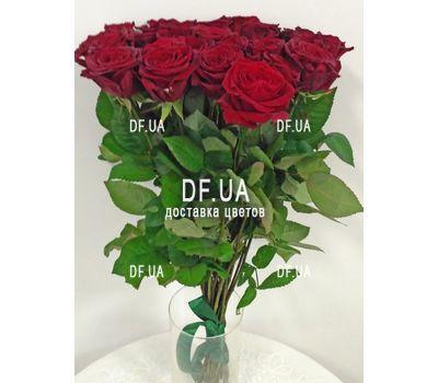 """""""27 красных роз - вид 3"""" в интернет-магазине цветов df.ua"""