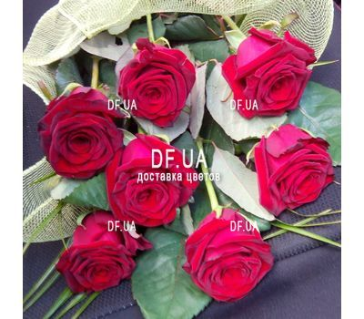 """7 red roses - view 1"" in the online flower shop df.ua"