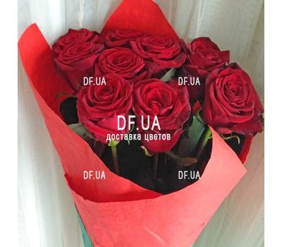 """9 red roses - view 6"" in the online flower shop df.ua"