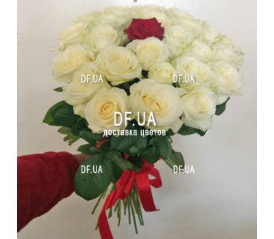 """White roses and one red rose - wiev 1"" in the online flower shop df.ua"