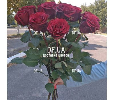 """Bouquet of 11 red roses - view 3"" in the online flower shop df.ua"