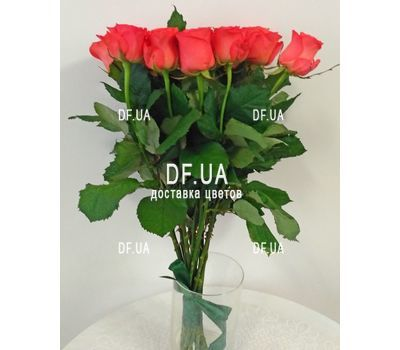 """Bouquet 15 coral roses - view 1"" in the online flower shop df.ua"