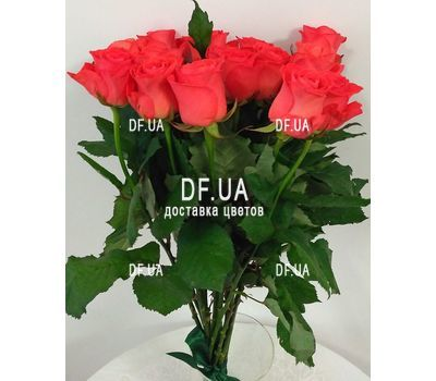 """Bouquet 15 coral roses - view 3"" in the online flower shop df.ua"
