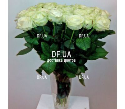 """""""19 white roses bouquet - view 2"""" in the online flower shop df.ua"""