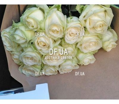 """""""19 white roses bouquet - view 5"""" in the online flower shop df.ua"""