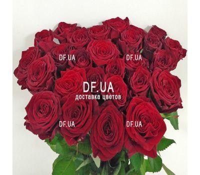"""""""Букет 29 красных роз - вид 5"""" в интернет-магазине цветов df.ua"""