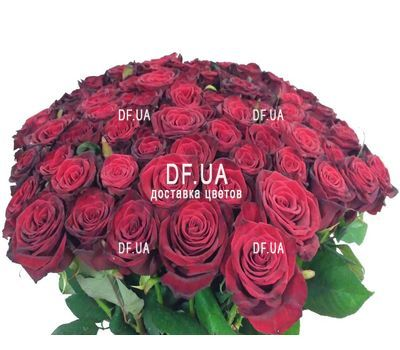 """A bouquet of 51 red roses - view 2"" in the online flower shop df.ua"